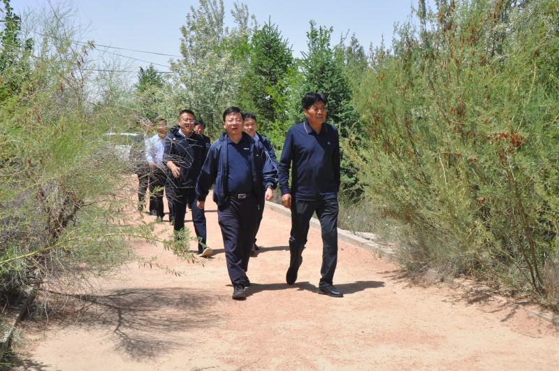 省林草局侯永强副局长调研指导民勤连古城保护区建设和管理工作
