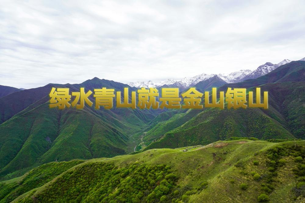 太子山:甘肃中南部地区重要的生态安全屏障